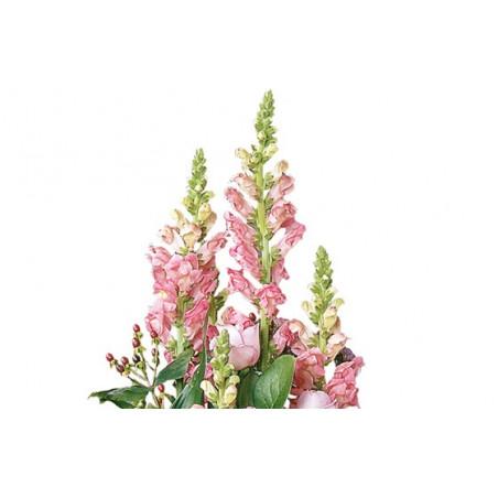 Fleurs fraîches